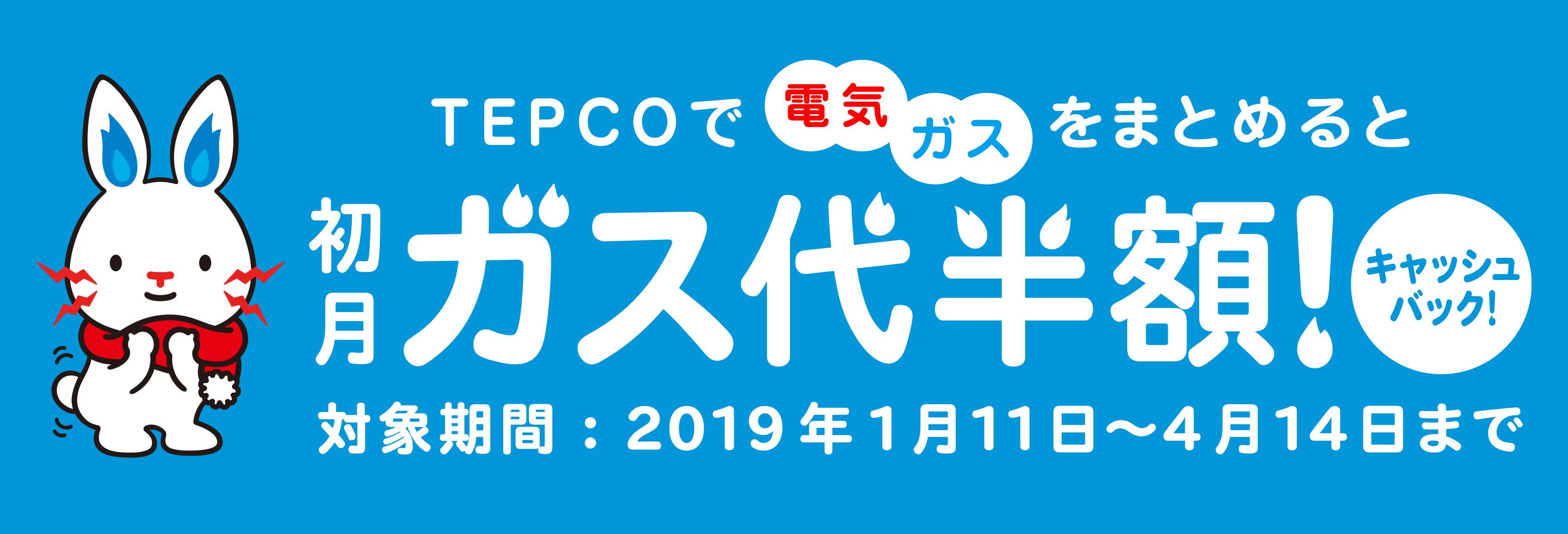 TEPCOで電気+ガスをまとめると初月ガス代半額!