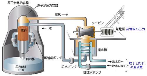 原子炉水温度|原子力|東京電力